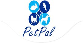 PetPal Online Pet Society